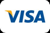 Accepted Card: Visa